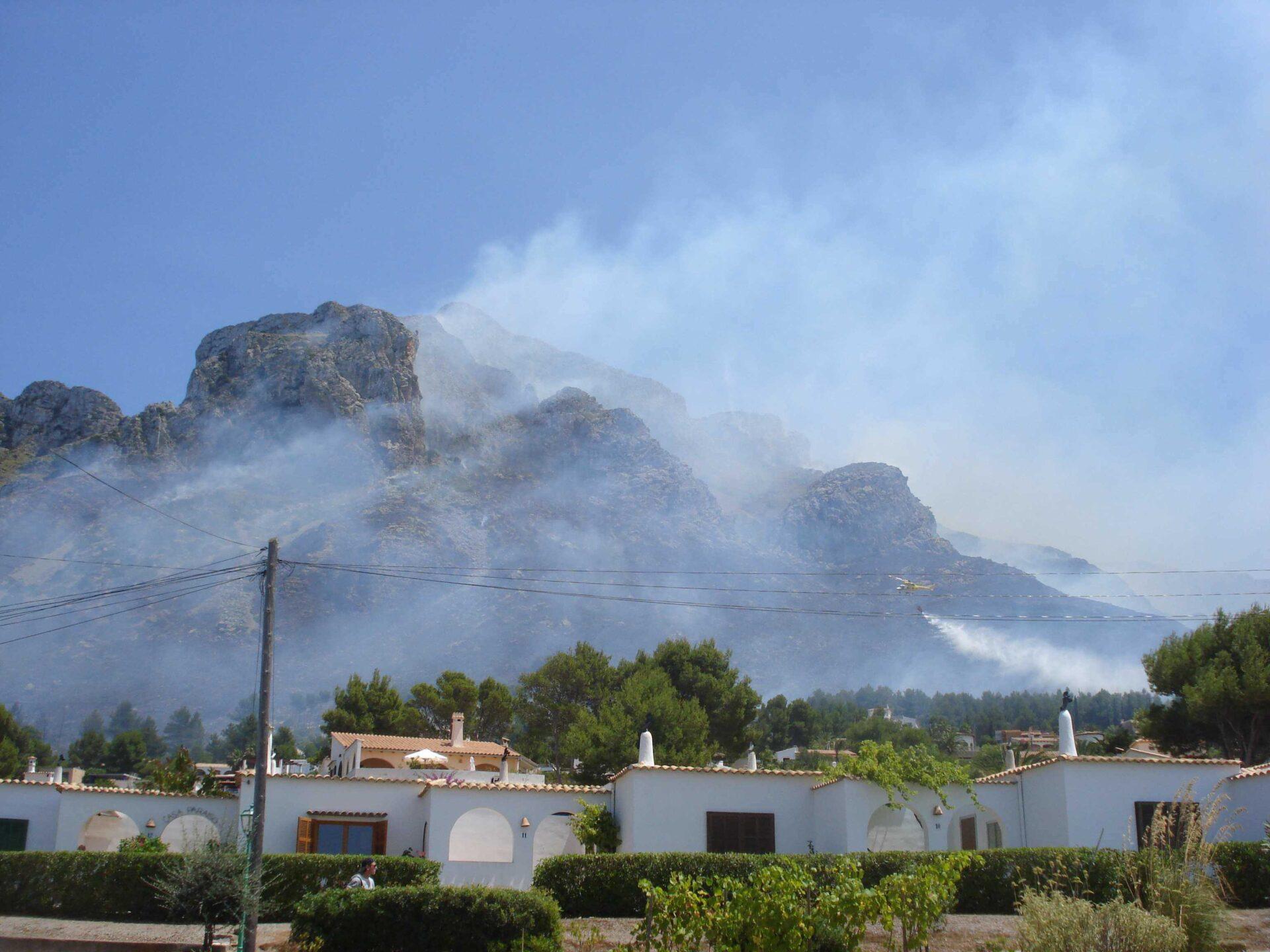 Rekordmånga skogsbränder på ön