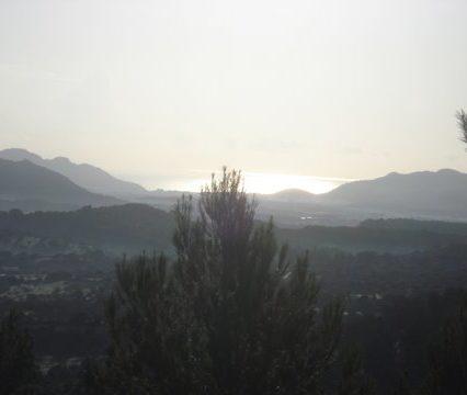 Krönika: Högt uppe på berget