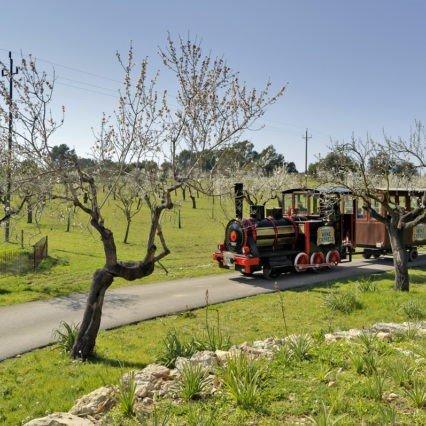 "Krönika: ""Mallorca Wine Express"""