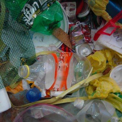 Mallorca vill importera sopor