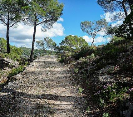 Turismen på Mallorca i oktober