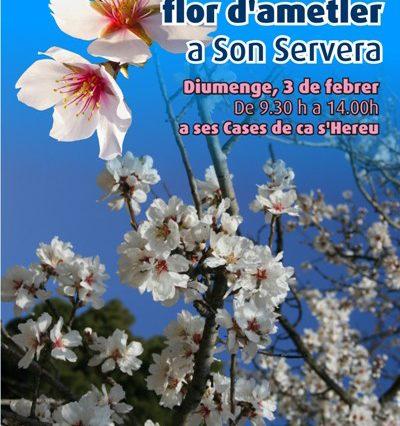 """""""IV Firó Flor d'ametler"""" i Son Servera"""