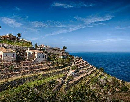 Bra januari för turismen på Mallorca