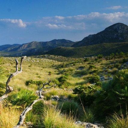 Naturskyddsområden på Mallorca