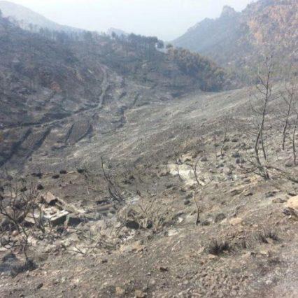Krönika: Med anledning av branden