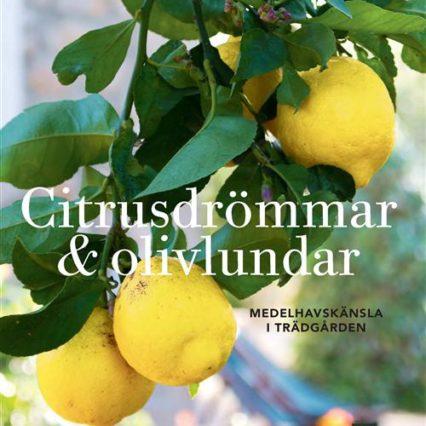 Boktips: Citrusdrömmar & olivlundar