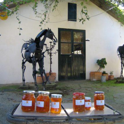 Sa Taronja – marmelad och Calçotada