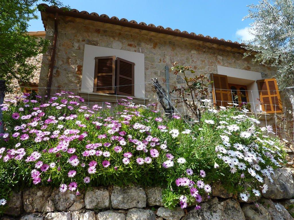 I december kom 95.441 utländska turister till Balearerna - en ökning med 29,0 procent