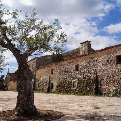 Turismen på Mallorca – augusti