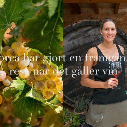 Mallorcas vin