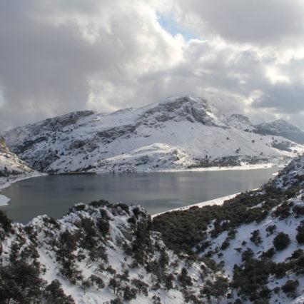 Elpriset rusade under onsdagens rekordkyla på Mallorca