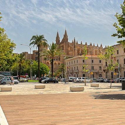 1 000 nya träd förskönar Palma